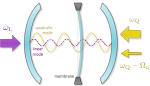 Degenerate parametric oscillation in quantum membrane optomechanics